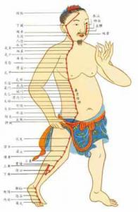 Points d'acupuncture Méridiens Médecine Chinoise Massage Tuina Dong Fa Ostéopathe Diététique Pharmacopée Naturopraticien Conseil de Vie 0608061955 Roland Gozlan Montpellier Herault Nimes Gard Languedoc
